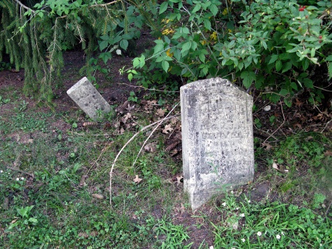 Graves of Mary and William Reeves, d. 1856 and 1857.