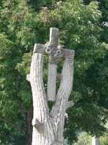 A cross carved in the crotch of a tree.