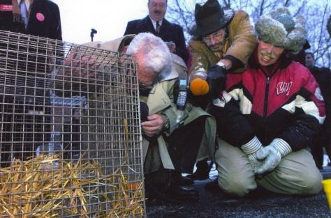 "Mayor David D. Hanneman leans in to listen to Jimmy the Groundhog speak ""groundhogese"" on Groundhog Day 2004."