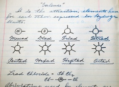Carl's notebooks contained meticulous notes on chemistry and other subjects.
