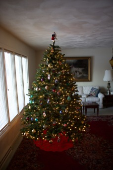 The Hanneman living room in Sun Prairie, decorated for Christmas in 2013.